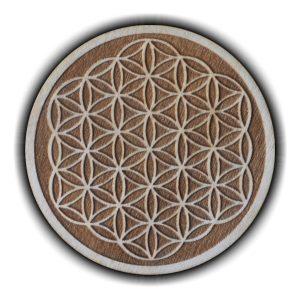 Pracownia Konkretu - kwiat zycia magnes